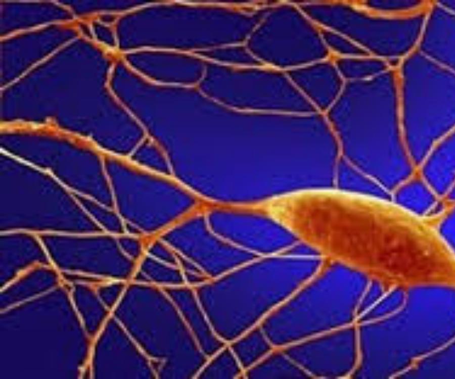 KANSERLE MÜCADELEDE YENİ SİLAH: MİKROSKOBİK DNA ROBOTLARI FARELERDE TÜMÖRLERİ KÜÇÜLTTÜ